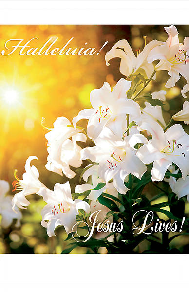 Picture of Halleluia! Jesus Lives Easter Regular Size Bulletin