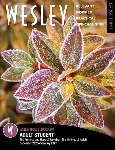 Picture of Wesley Adult Bible Student Large Print Winter 2020-2021