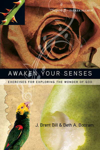 Picture of Awaken Your Senses