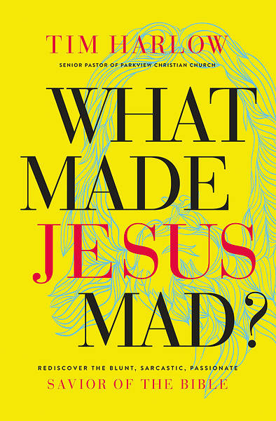 Picture of What Made Jesus Mad?