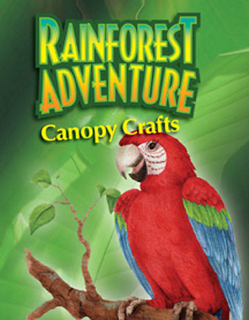 Augsburg Vacation Bible School 2008 Rainforest Adventure Canopy Crafts VBS