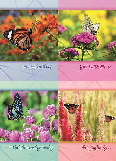 Picture of Butterfly Gardens All Occasion Boxed Cards