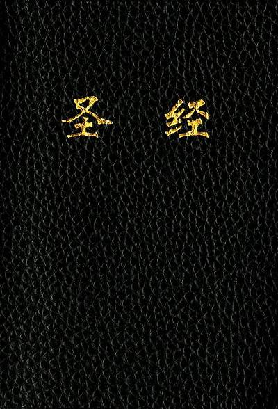 Picture of Chinese Bible-FL