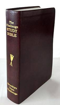 The CEV Challenge Study Bible - Flexi Bind