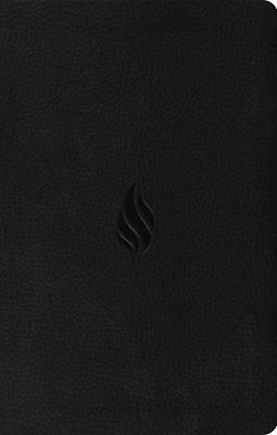Picture of Premium Gift Bible-ESV-Flame Design