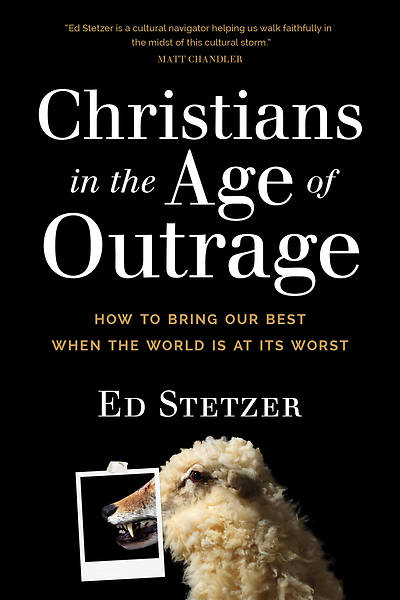 Picture of Christians in the Age of Outrage