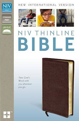 New International Version Thinline Bible