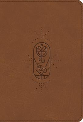 Picture of ESV Kid's Bible, Compact (Trutone, the True Vine)