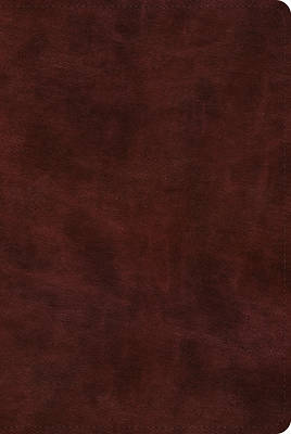 Picture of ESV Bible with Creeds and Confessions (Trutone, Burgundy)