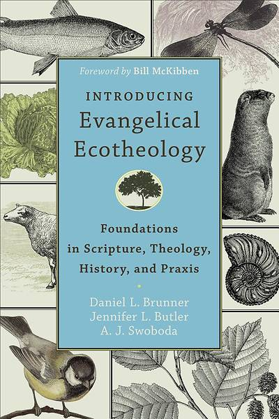 Picture of Introducing Evangelical Ecotheology