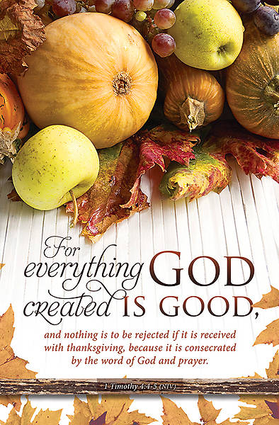 Thanksgiving Everything God Created Bulletin 1Timothy 4:4-5 NIV Regular (Package of 100)