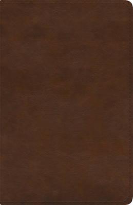 Picture of ESV Spanish/English Parallel Bible (La Santa Biblia Rvr / The Holy Bible Esv, Trutone, Brown)