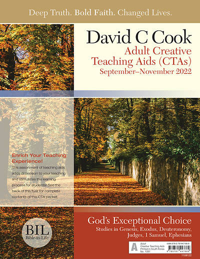 Bible-in-Life Adult Comprehensive Bible Study Creative Teaching Aids Fall
