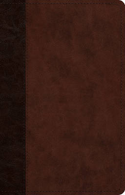 Picture of ESV Large Print Thinline Reference Bible (Cover A)