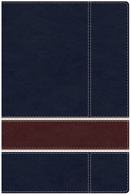 Military Families Bible Navy/Crimson Leathertouch