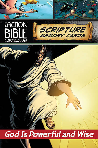 The Action Bible Scripture Memory Cards CSB Fall