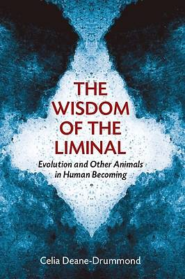 Picture of The Wisdom of the Liminal