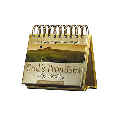 Picture of God's Promises Daybrightener