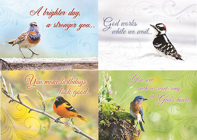Cheerful Chirps General Boxed Cards