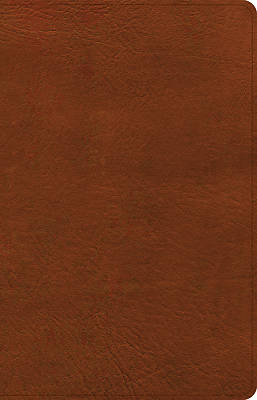 Picture of CSB Thinline Bible, Burnt Sienna Leathertouch