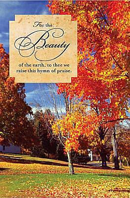 Fall/For the Beauty Bulletin 2011, Regular (Package of 50)