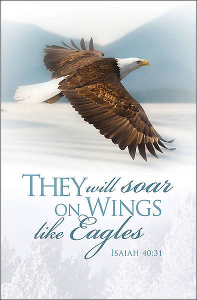 Picture of They Will Soar