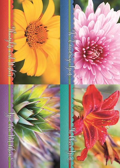 Hope Blooms Encouragement Boxed Cards