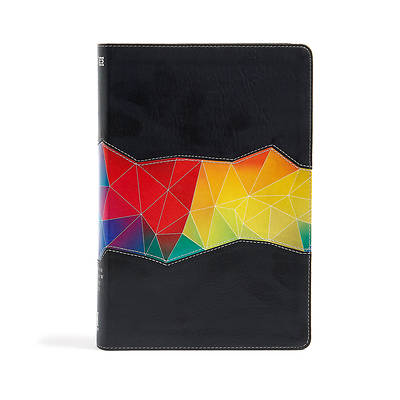 Picture of NIV Rainbow Study Bible