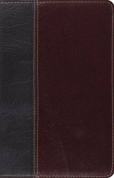 ESV Vintage Thinline Bible (Black/Chestnut,
