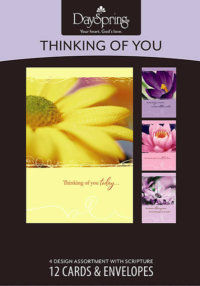 Thinking of You Bright Blooms Boxed Cards