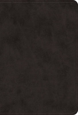 Picture of ESV Value Large Print Compact Bible (Cover A)