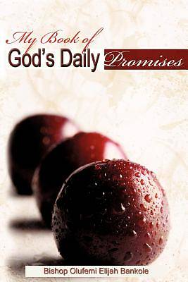My Book of Gods Daily Promises