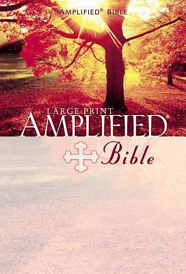 Amplified Bible, Large Print Edition