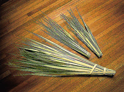 Picture of 13 Inch Palm Strips - Pack of 100