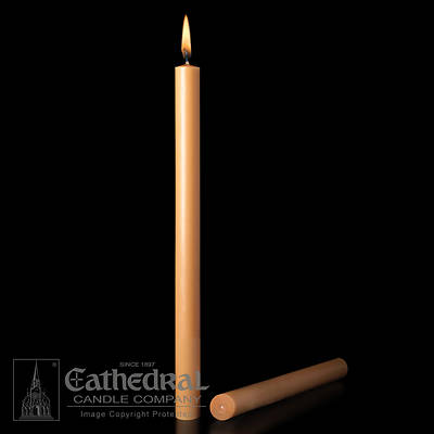 Picture of 51% Beeswax Altar Candles Cathedral 12 x 1 1/4 Pack of 12 Plain End