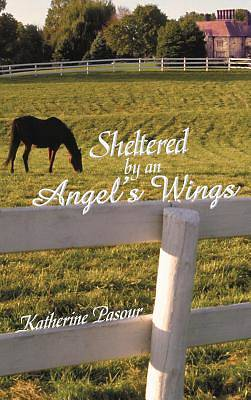 Sheltered by an Angels Wings