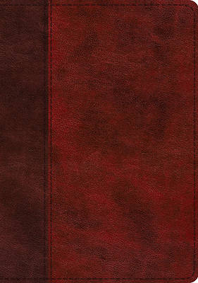 Picture of ESV Single Column Journaling Bible, Large Print (Trutone, Burgundy/Red, Timeless Design)