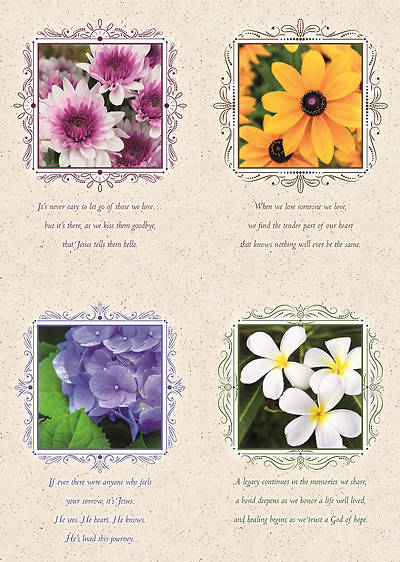 Picture of Portraits of Peace Sympathy Boxed Cards