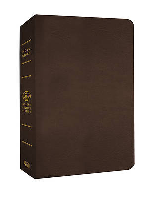 Picture of Giant Print Bible-Mev