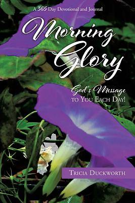 Picture of Morning Glory