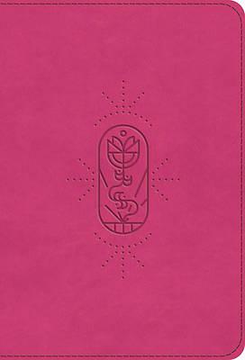Picture of ESV Kid's Bible, Compact (Trutone, Berry, the True Vine Design)