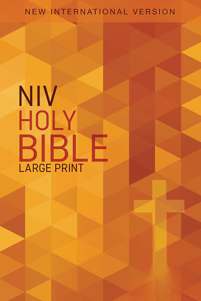 Case of 20 - Outreach Bible-NIV - Large Print