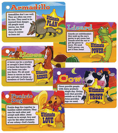 Gospel Light Vacation Bible School 2013 SonWest RoundUp Connection Cards (pkg25)