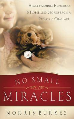 Picture of No Small Miracles