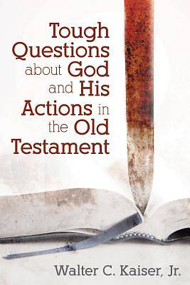 Picture of Tough Questions about God and His Actions in the Old Testament