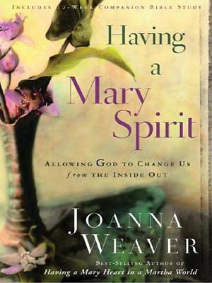 Having a Mary Spirit Large Print Edition