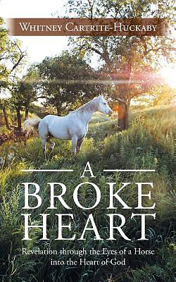 Picture of A Broke Heart