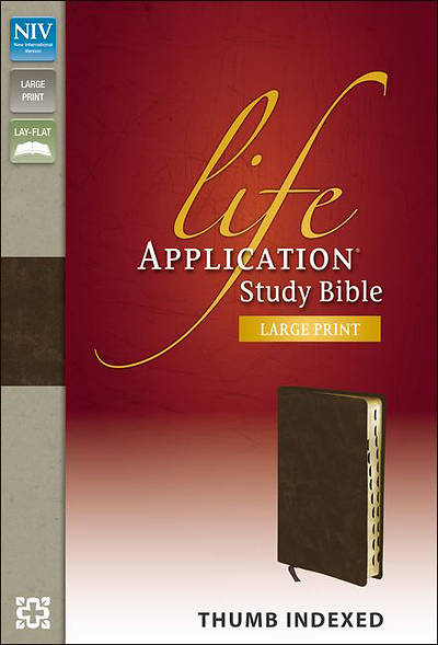 NIV Life Application Study Bible - Large Print
