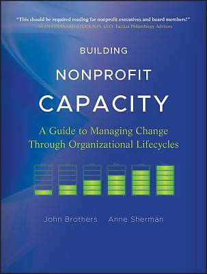 Picture of Building Nonprofit Capacity