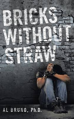 Picture of Bricks Without Straw